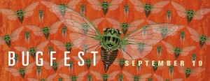 Bugfest 2015 Downtown Raleigh